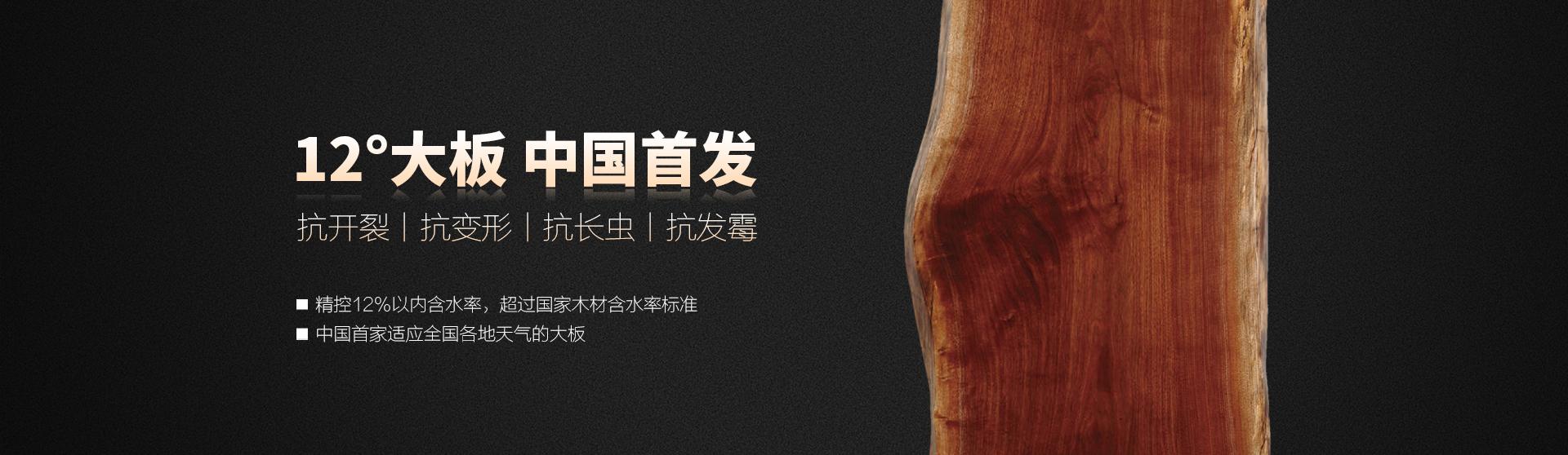 12°大板 中国首发